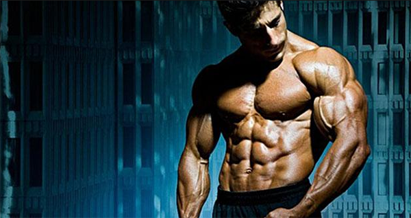 Tribulus Terrestris aumenta níveis de testosterona?